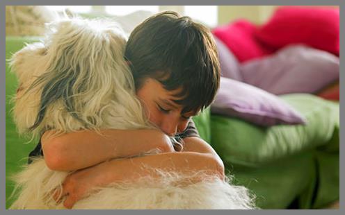 Boy hugging large blonde dog